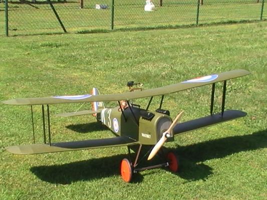 RAF-10