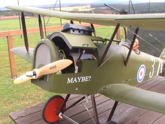 RAF-6