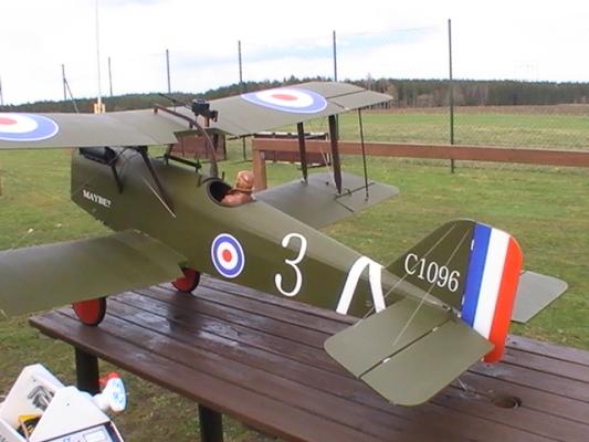 RAF-7