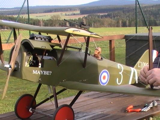 RAF-8