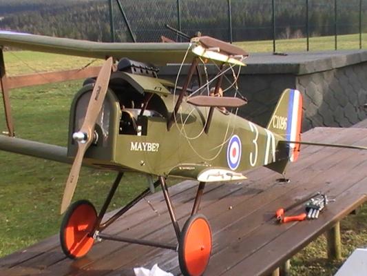 RAF-9